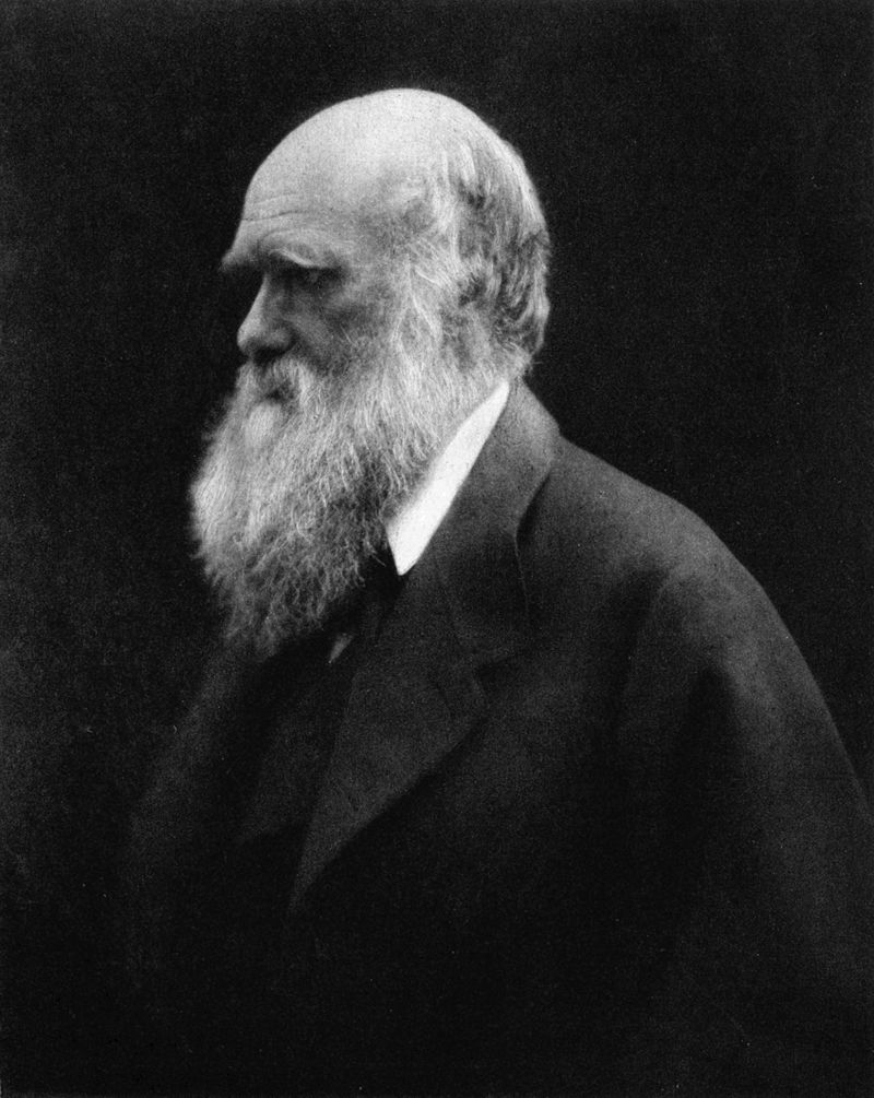 Джулия Маргарет Камерон - портрет - Чарльз Дарвин
